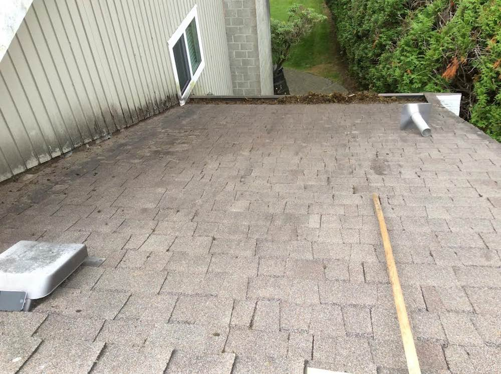 Langley Moss Removal - after image. We finished the project, gutter cleaning inside and out of the entire system.