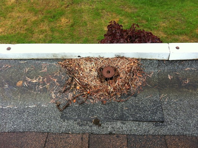 poor drainage - hidden gutter repair - gutter cleaning