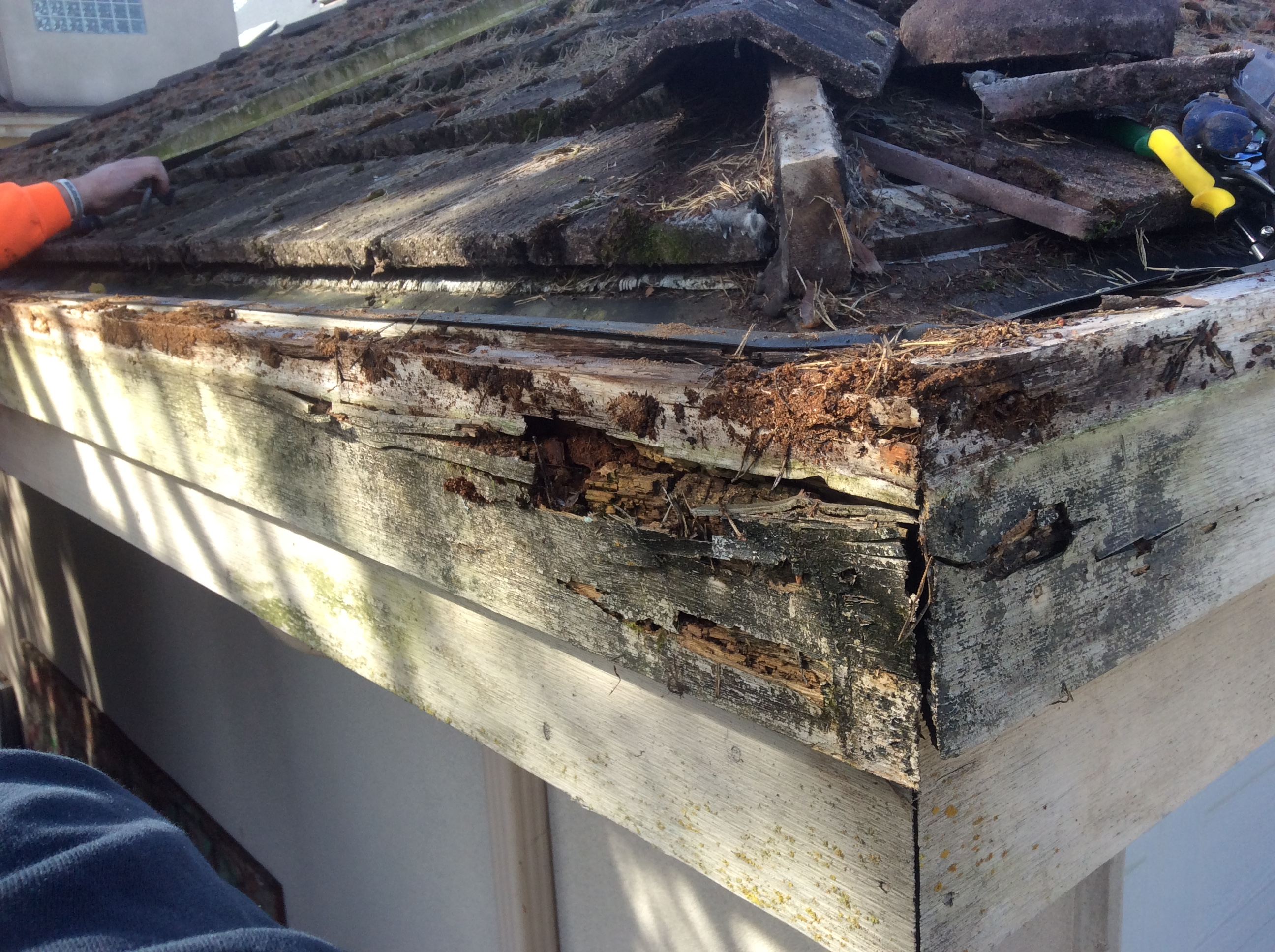 Hidden Gutter Repair for Kitsilano Home - Rotten Facia Board