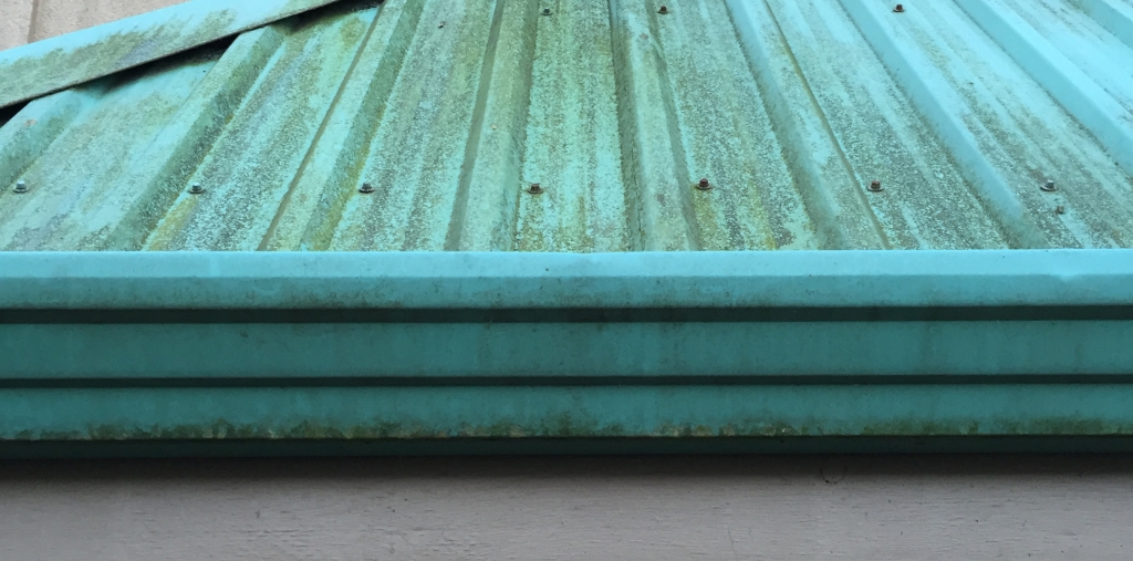 Moss Growing on Gutters